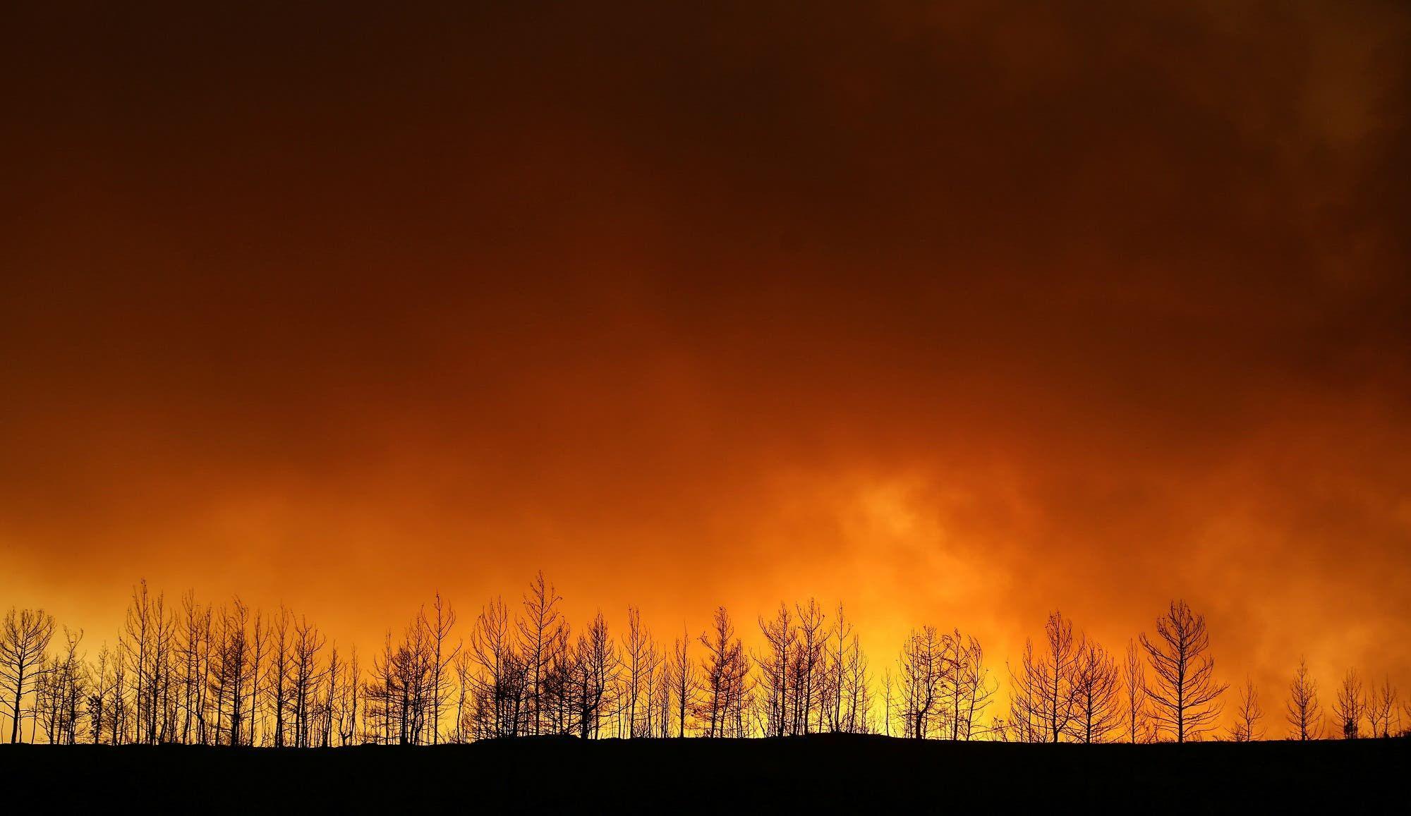 حريق غابات شرق منتجع أنطاليا في تركيا (أرشيفية من رويترز)