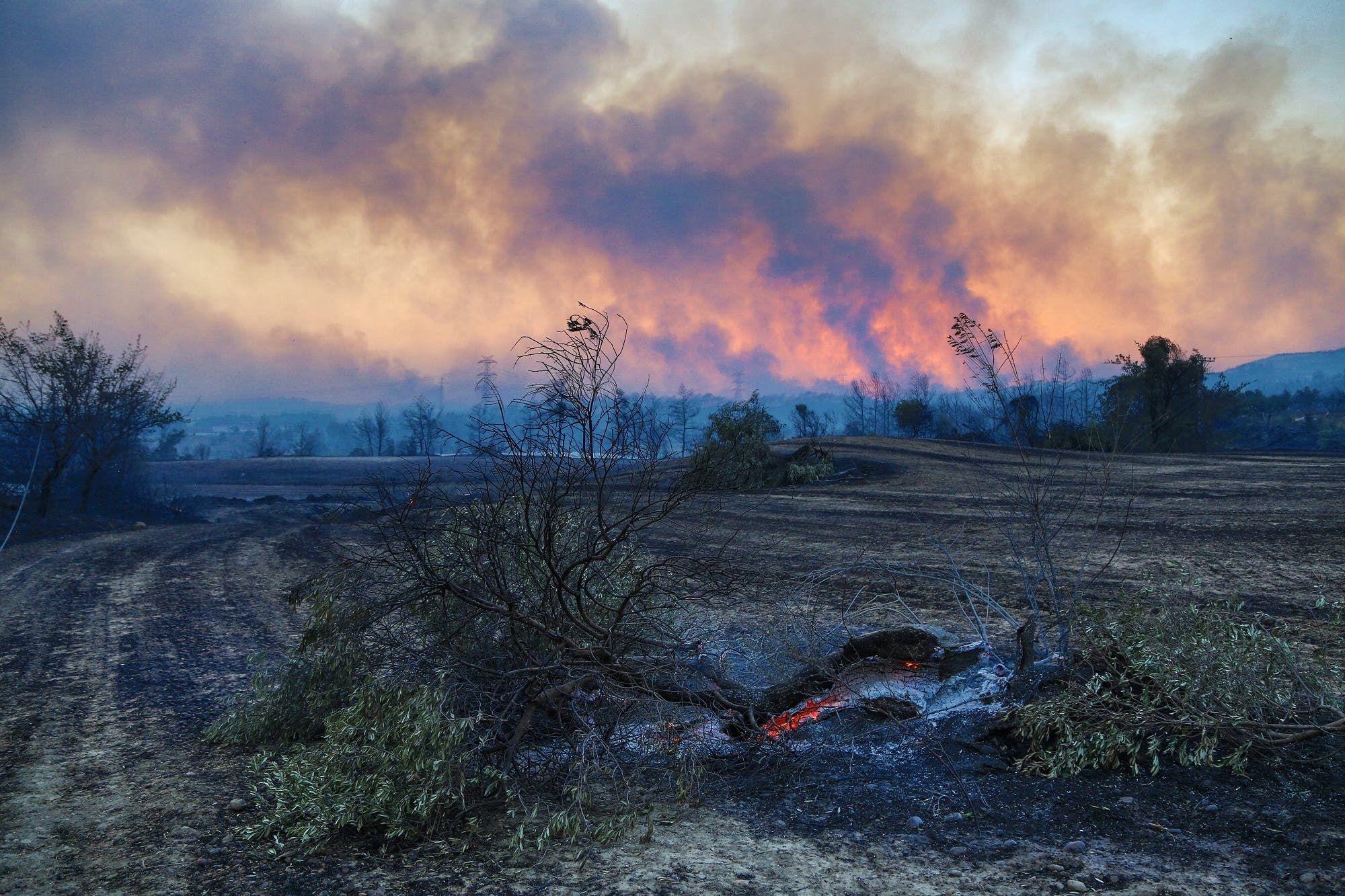 دخان يتصاعد عقب حريق في غابة بالقرب من بلدة مانافجات التركية (أرشيفية من رويترز)