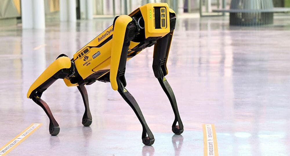 كلاب روبوتية