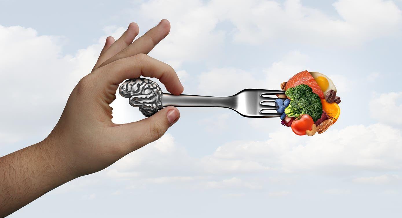 مغذيات المخ