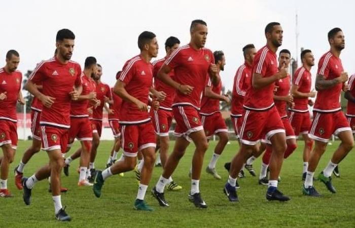 المغرب يوجه بوصلته لنجوم الدوري الهولندي