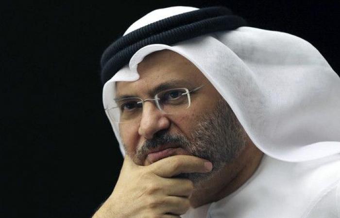 قرقاش لأحمد شفيق: نأسف أن ترد الجميل بالنكران