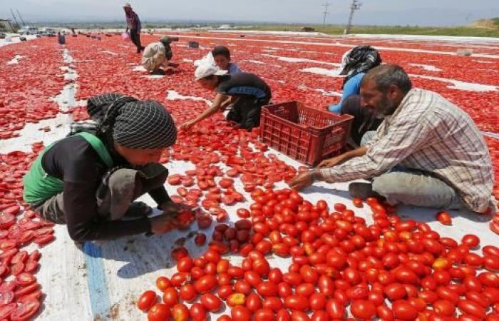 البناء والخدمات يقفزان بالنمو التركي لمستويات قياسية