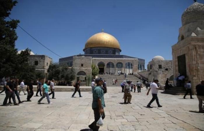 بلدية الاحتلال تعرض مخططها لمشروع القطار الهوائي والأرضي لربط القدس الشرقية بالغربية