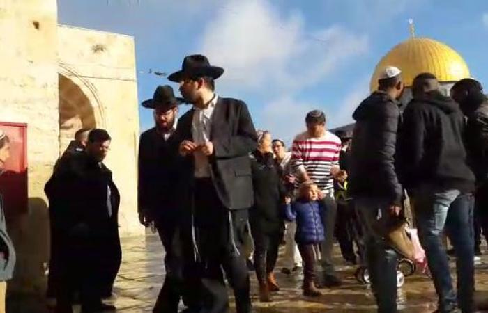 100 متطرف يهودي يقتحمون باحات الأقصى