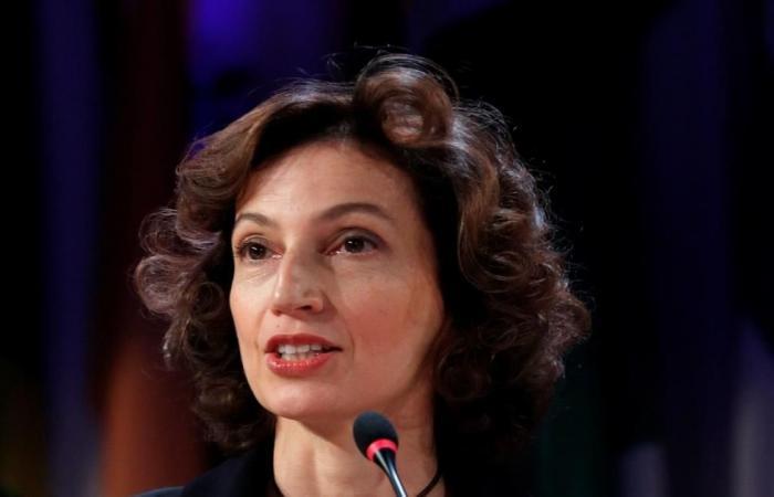 اليونسكو: العربية من أركان التنوع الثقافي للبشرية