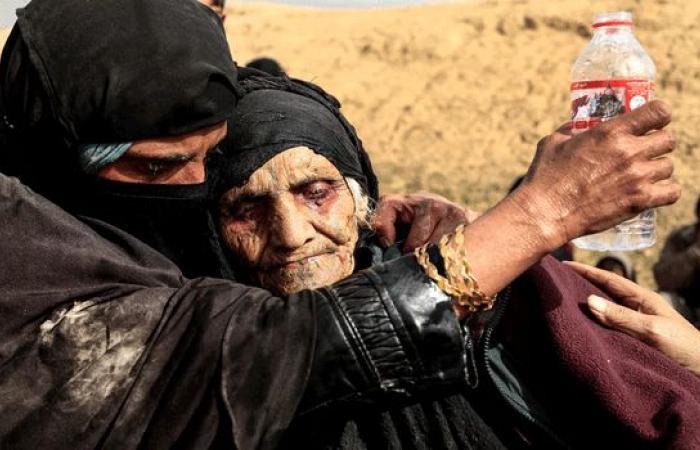 صور زهرة الجزائرية التي اختارتها الغارديان مصورة 2017