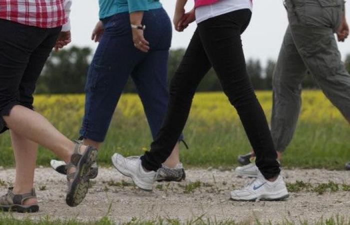 لماذا المشي في المنتزهات أفضل من الشوارع؟