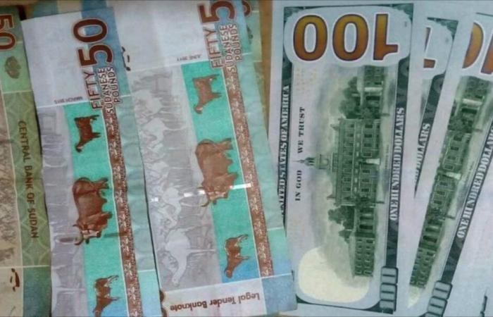 وزير: السودان يخفض عملته إلى 18 جنيها للدولار