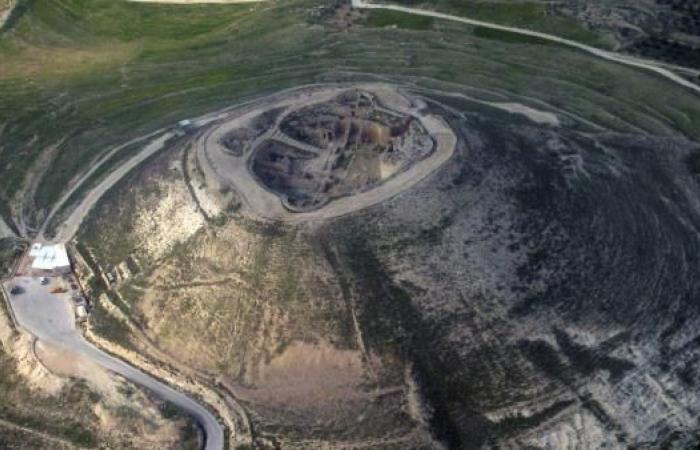 هانز فوروهاجن.. علم الآثار وتحرير فلسطين من قبضة الخرافة