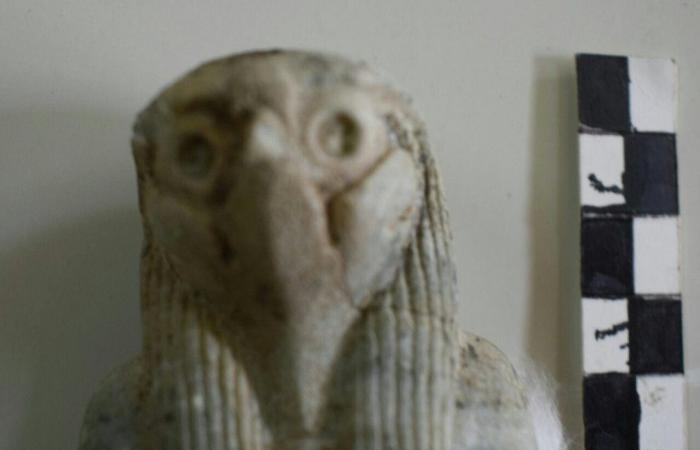 بالصور.. آخر اكتشافات 2017 من نصيب مصر