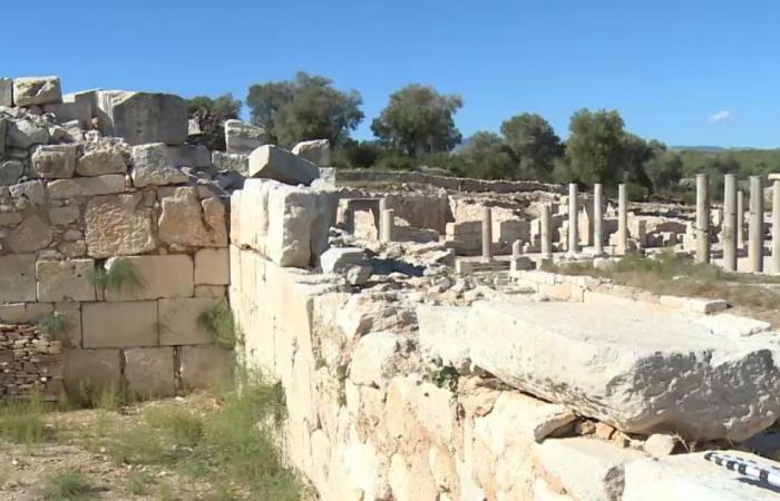 حضارة الليكين بتركيا من أوائل أشكال الحكم الاتحادي