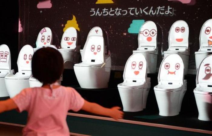 اليابان تريد التخلص من المراحيض العربية قبل 2020