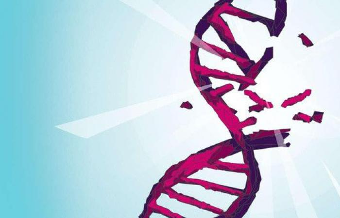 دراسة تحذر: الكحوليات تهاجم خلايا الجسم وتسبب السرطان