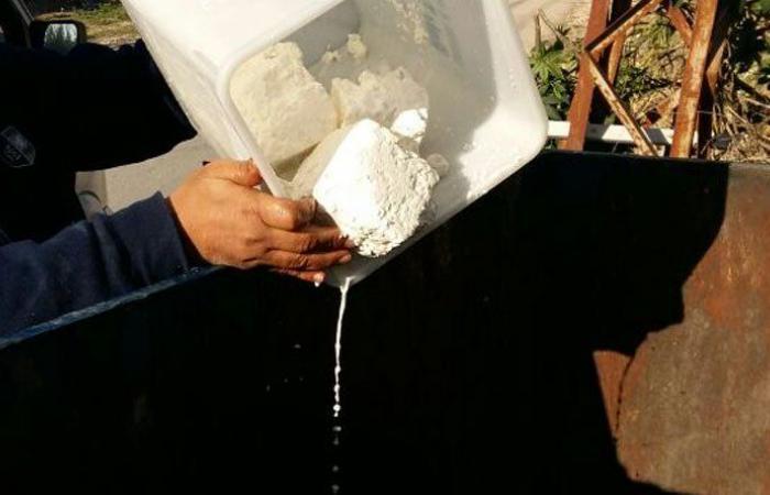 وزارة الصحة تقفل مسلخين وتتلف كميات من الجبنة الفاسدة في صيدا