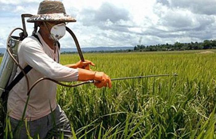 توزيع مبيدات زراعية في الكورة