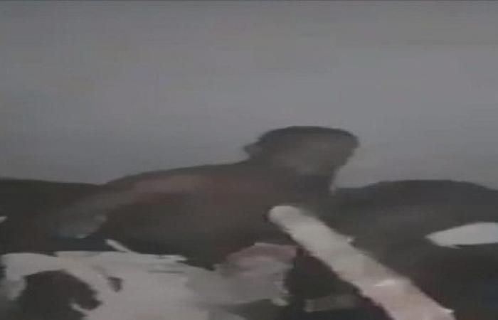 فيديوهات جديدة صادمة لعمليات تعذيب مهاجرين في ليبيا