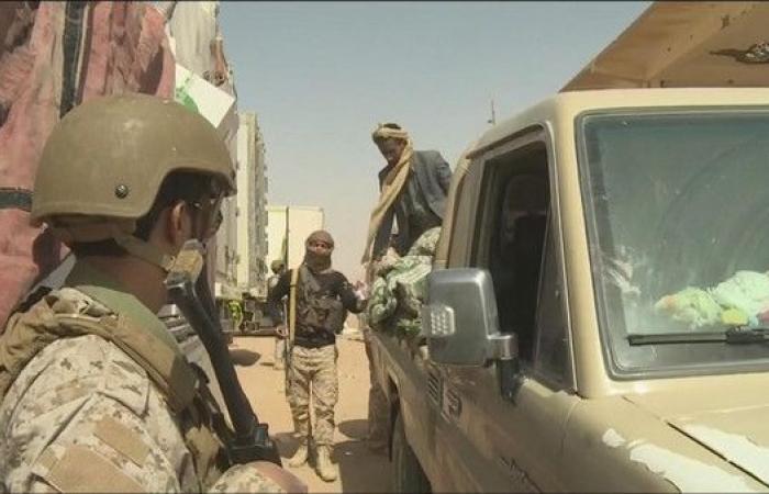 الحديدة.. الجيش اليمني على مشارف مركز مديرية حيس