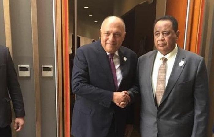اتفاق مصري سوداني للحفاظ على العلاقات وتجنب الإساءات