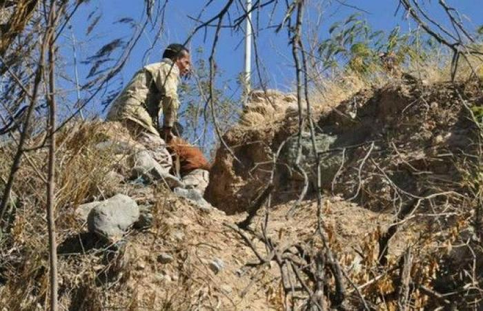 تعز.. الجيش اليمني يحرر مواقع جديدة ومقتل 22 حوثياً