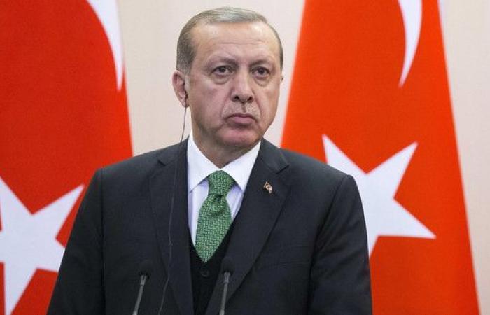 """أردوغان: سنطهر كامل حدودنا مع سوريا من """"الإرهابيين"""""""