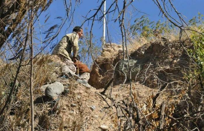 الجيش يتقدم نحو معاقل الحوثيين الأخيرة جنوب شرق تعز