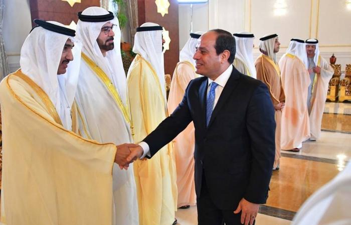 استراتيجية مصرية إماراتية لمنع وصول السلاح للإرهابيين