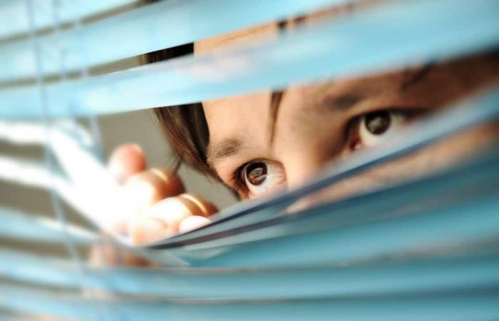 كاسبرسكي لاب: 36 في المئة من الأشخاص في دولة الإمارات قاموا بالتجسس على شركاء حياتهم على الإنترنت