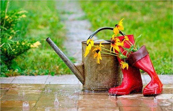 """""""الصيت للمربعانية والفعل لشباط"""".. هذا موعد عودة الأمطار"""