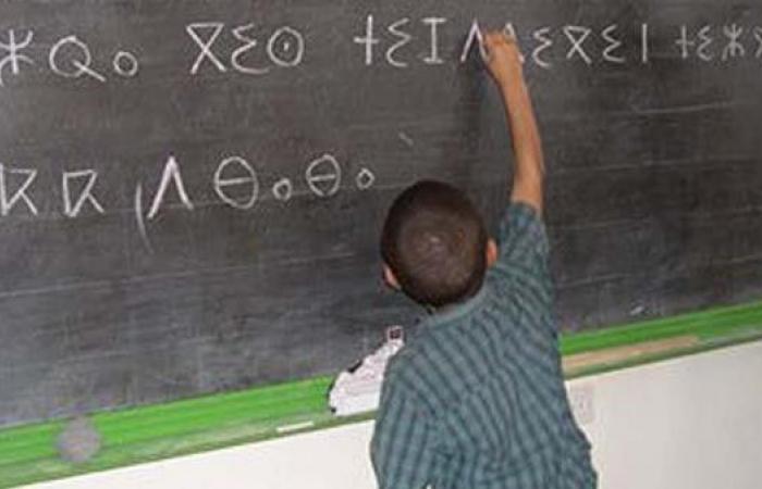 """برلمانية تُنكر لسان 30 مليوناً: """"الأمازيغية ليست لغة"""""""