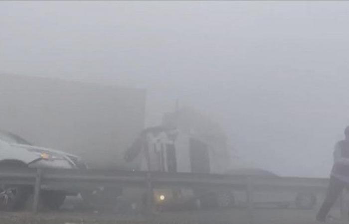 فيديو.. حادث سير ضخم في أبوظبي بسبب الضباب