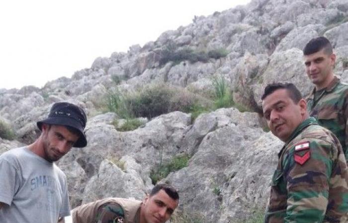 بالصور.. الجيش يغرس 600 صنوبرة في النبي يوشع