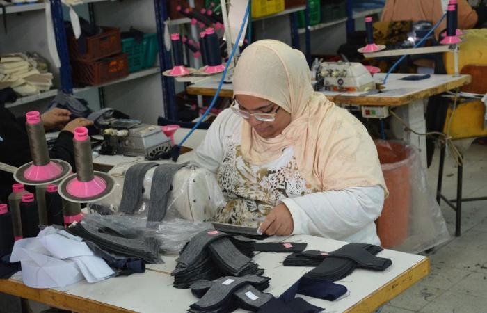 مصر.. جمعية لتأهيل ذوي الإعاقة الفكرية للحصول على وظائف