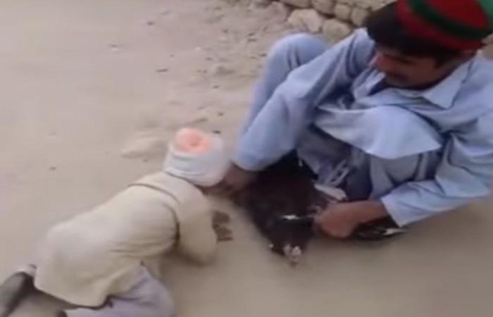 بالفيديو… طفلٌ ينقذ دجاجة من سكين ذابحها