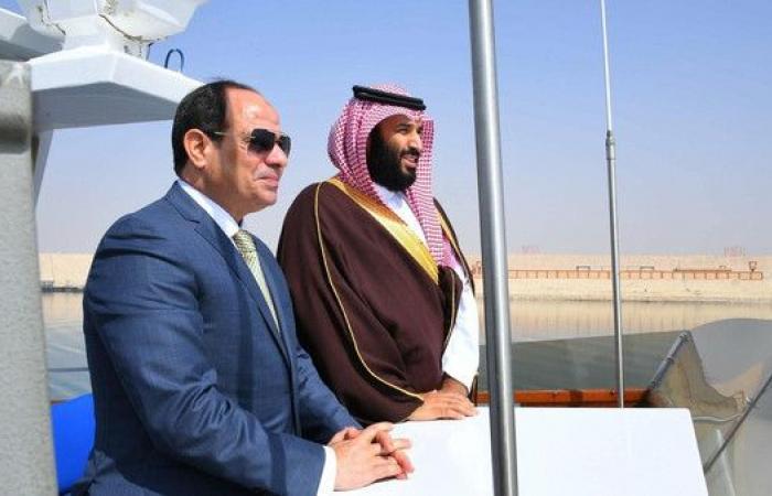تفاصيل اتفاقية مصر والسعودية لحماية المنطقة بيئياً