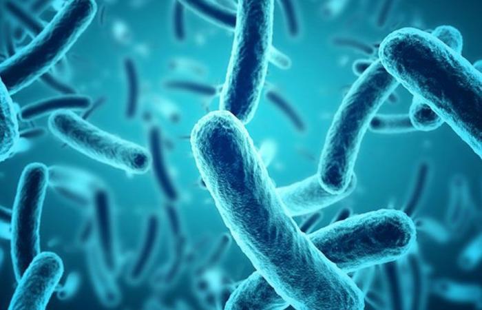 """مرض جديد على قائمة """"الأوبئة العالمية"""""""