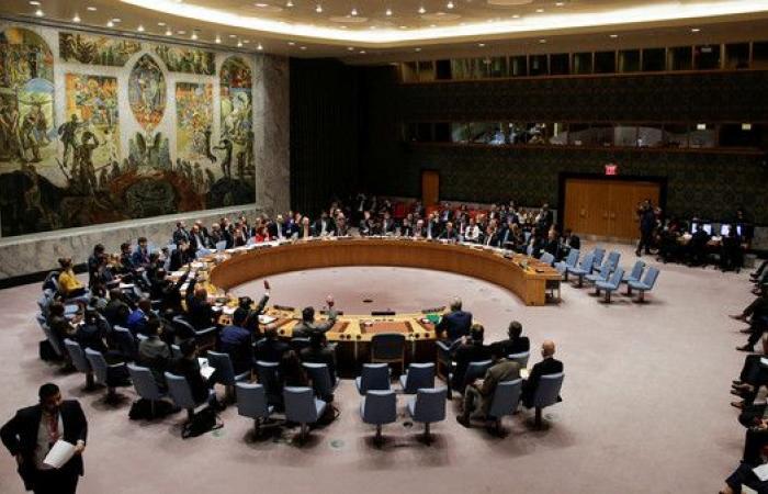 أميركا تهدد بالتحرك بشأن سوريا إذا تقاعس مجلس الأمن