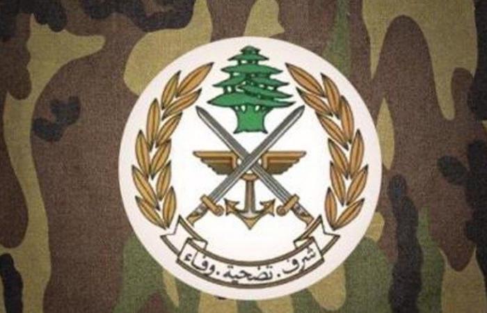 الجيش: طائرتان عدوتان خرقتا أجواء البقاع والجنوب