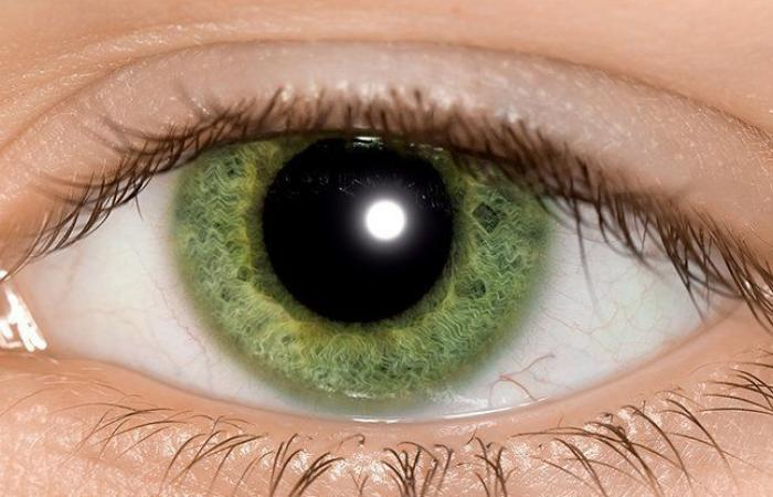 خداعٌ بصريٌّ بسيطٌ قد يساعد في تشخيص التوحد