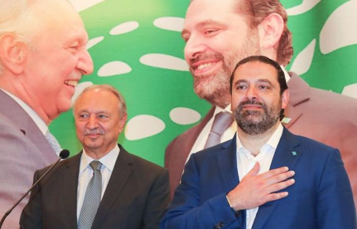 الحريري: ثمة من قاصص طرابلس لأنها وقفت معي