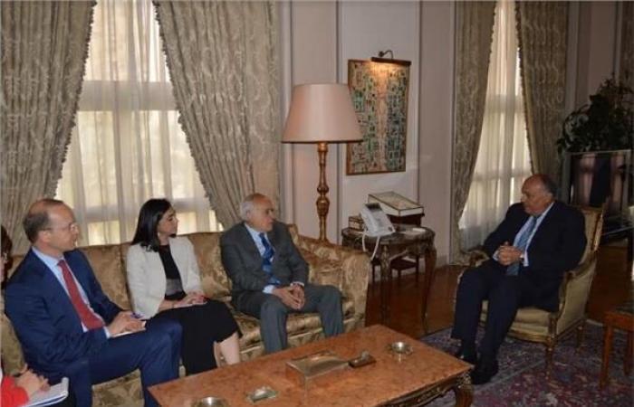شكري يبحث مستجدات الأزمة الليبية مع غسان سلامة