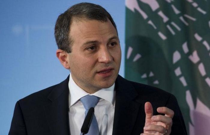باسيل: كل صوت في الانتشار هو صوت للبنان