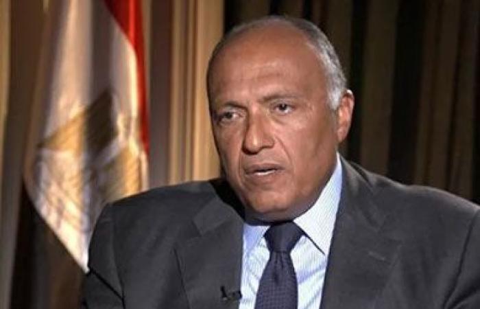 شكري: فكرة إحلال قوات بأخرى «ربما عربية» وارد لتقدير إسهام ذلك في استقرار سوريا