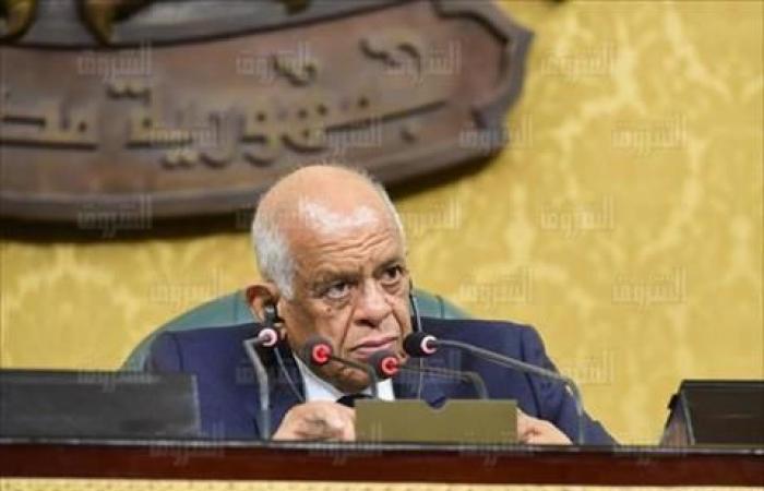 رئيس مجلس النواب: انتخابات المحليات قبل نهاية العام الجاري