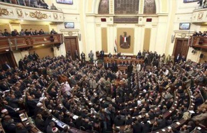 لجنة بمجلس النواب تدعو لإرسال «قوات دولية إلى فلسطين»