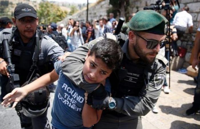 مندوب مصر لدى الأمم المتحدة: نطالب بمحاسبة المسؤولين عن الانتهاكات التي تمارس ضد الفلسطينيين