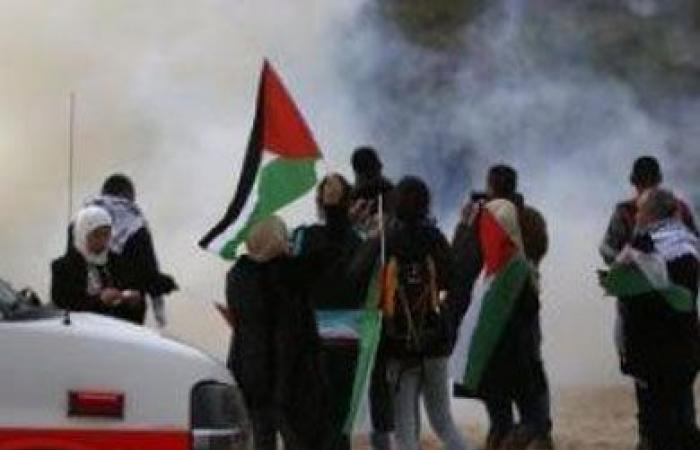 فيديو.. وزير الخارجية: على المجتمع الدولي مسؤولية حماية الشعب الفلسطيني