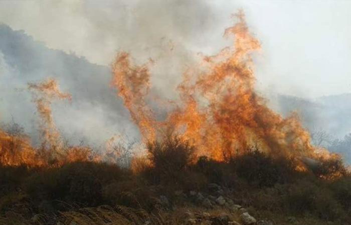 حريق في جبل بلدة مزرعة العكارية
