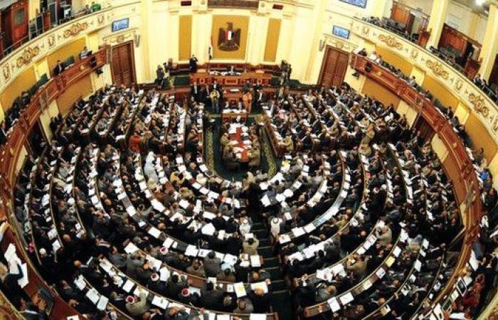 مصر تقر بصفة نهائية قانوناً يحصن بعض كبار قادة الجيش