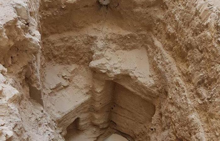 تابوت مصري قد يصيب العالم بلعنة...هذه حقيقته